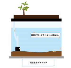 観葉植物 上部フィルター 農薬チェック