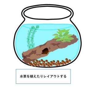 ボトリウム-作り方-レイアウト