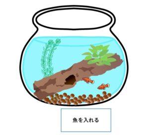 ボトリウム-作り方-魚